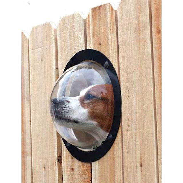 PetPeek Fence